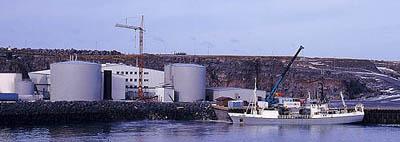 Fishmealprocessing_2